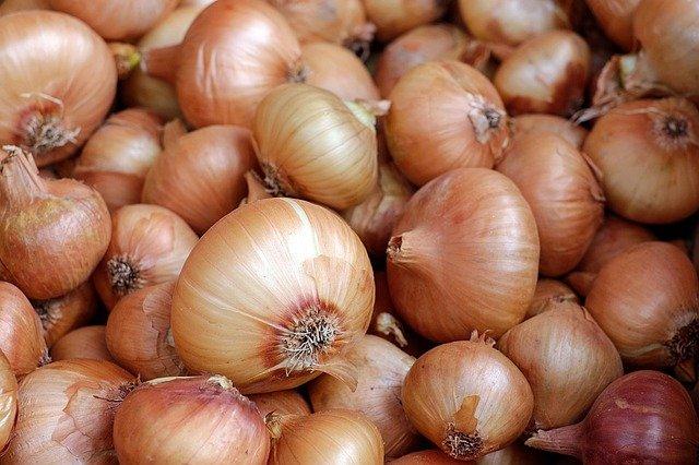 onions-1397037_640